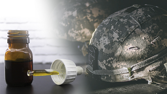 best cbd for ptsd