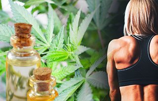 CBD for Muscle Recovery: Medical Benefits, Studies, and Dosage