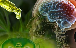 cbd oil for traumatic brain injury