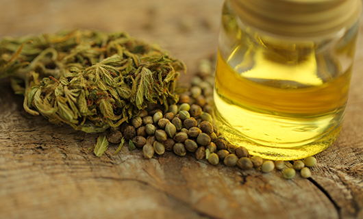THC vs. CBD: Why is There THC in CBD Oil?