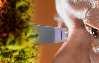 CBD for Glaucoma: Medical Benefits, Studies, and Dosage