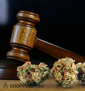 Specific Cannabis Laws in New York