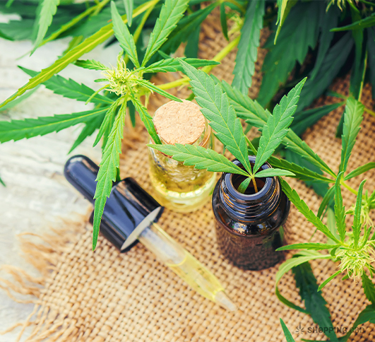 when was cbd oil discovered