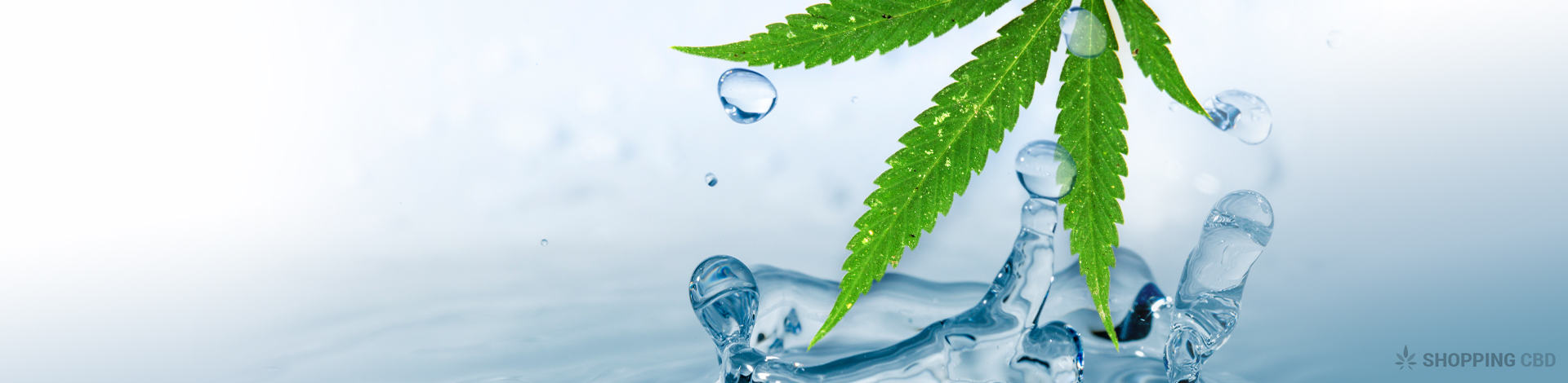 CBD Water: Things You Need to Know
