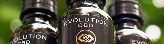 new evolution cbd oil