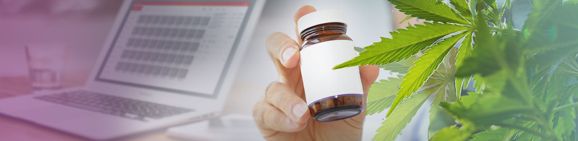 What Are the Best CBD Pills for Sale Online? [2018 Reviews]