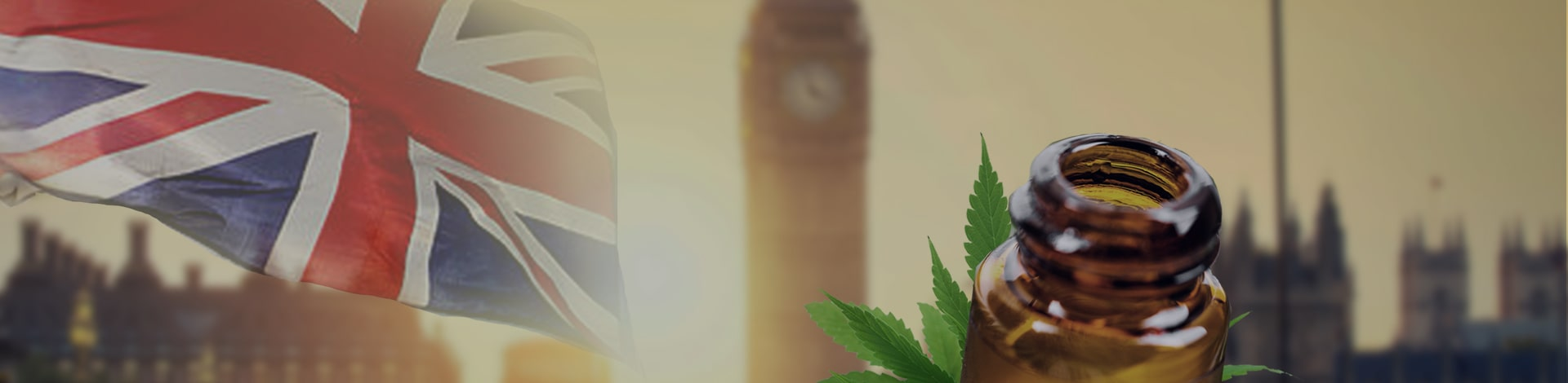 Best CBD Oils UK: Our Top 10 Picks