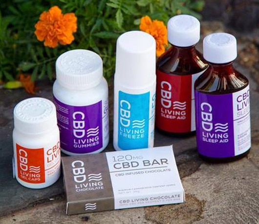CBD Living Oil Review