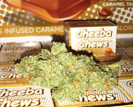 cheeba chews review
