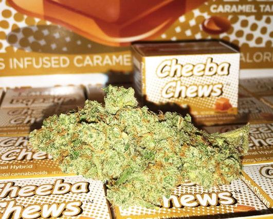 cheeba chews review